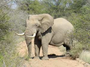 South Africa trip 2013 108